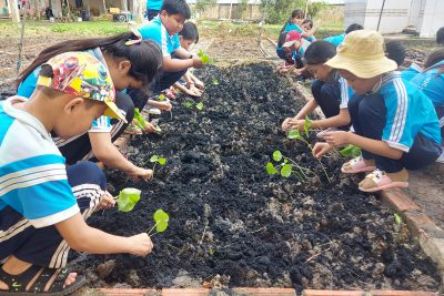 Mô hình kết nối yêu thương của chi bộ trường tiểu học Vĩnh Bình Bắc 2 giúp đỡ học sinh khó khăn
